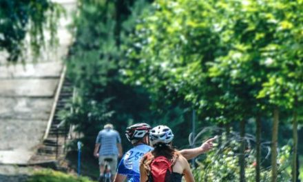 The Art of Mountain Biking: Develop These Skills First